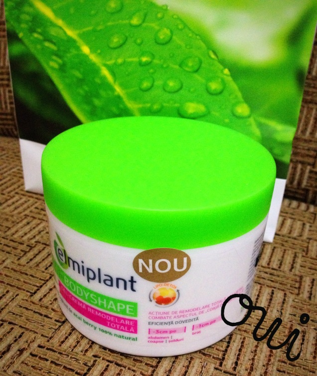Elmpiplant