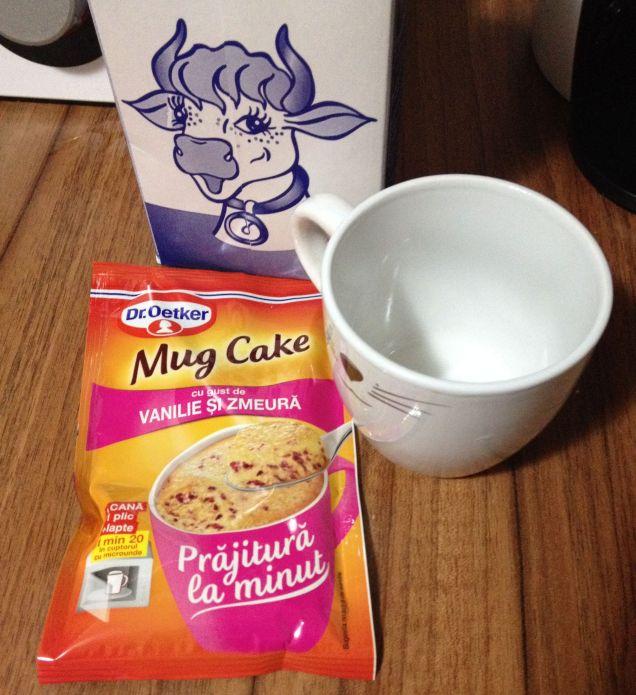 mugcake1